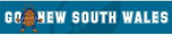 Go New South Wales poster